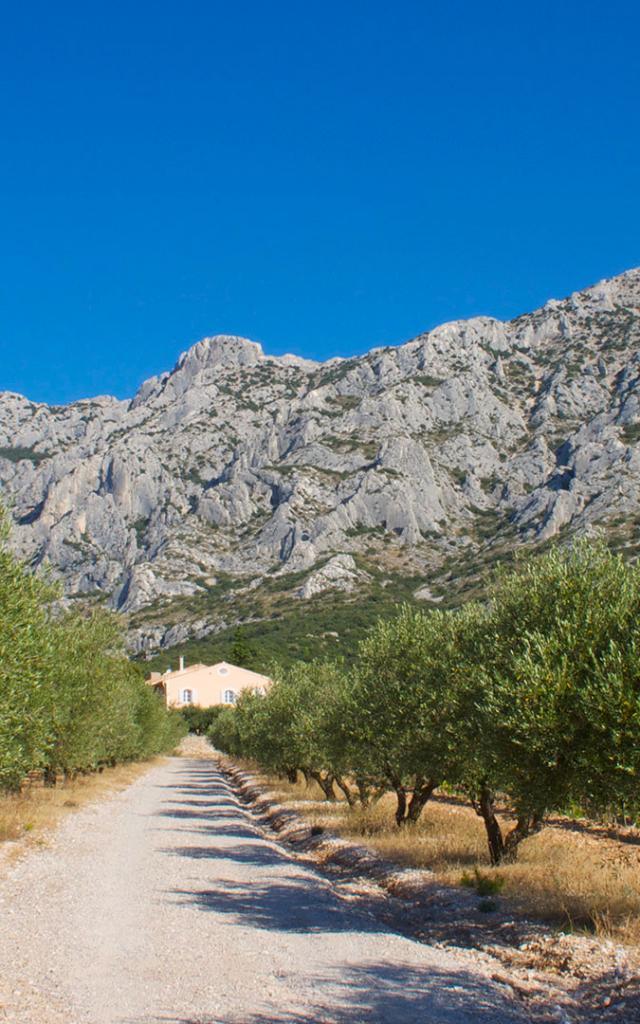 Espaces Naturels Provence