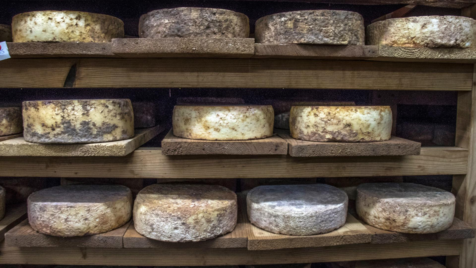 fromages-alpes-adet05-patdomeyne-2-1.jpg