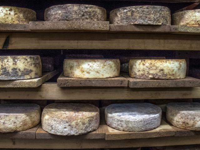 Fromages Alpes Adet05 Patdomeyne 2