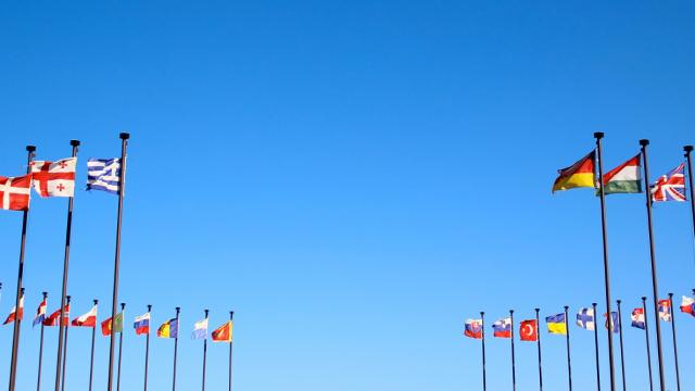 international flags in the wind against the sky