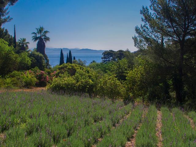 Jardin Mugel Laciotat Provence Amouton