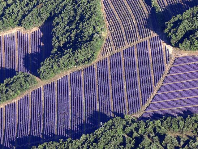 La Provence Vue Du Ciel Francemontgolfieres