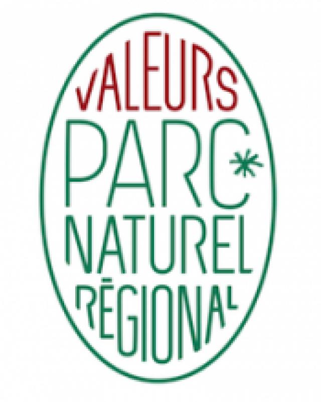 Logo Vpn 1