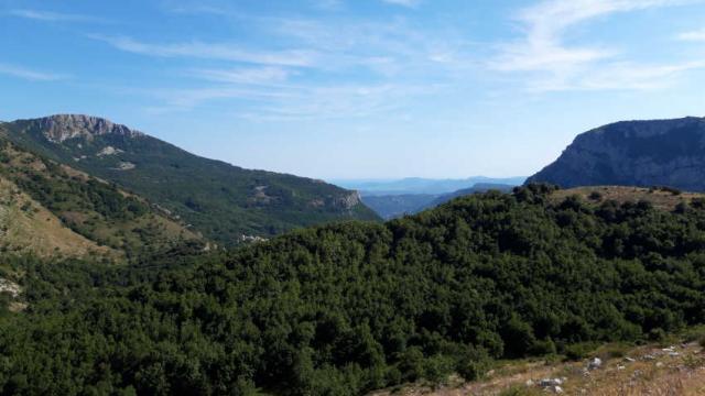 Maralpine Plateauprealpin Asalomone 1
