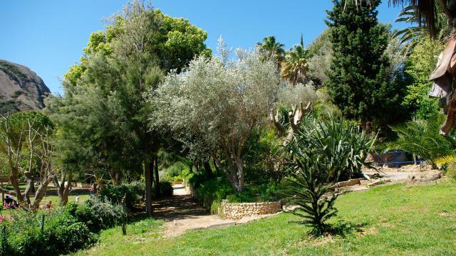 parc-mugel-balade-provence-btriffaux-1.jpg