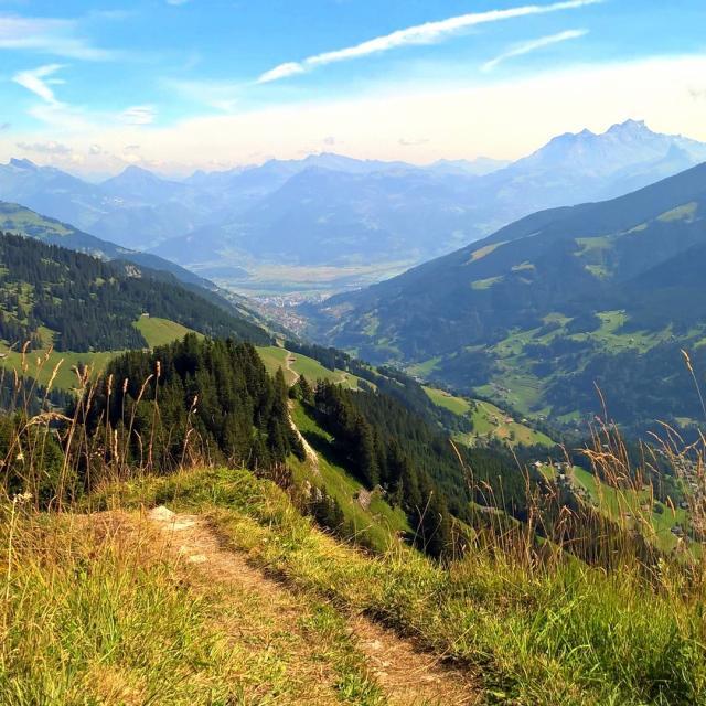Vje des Préalpes randonnée paysage moyenne montagne / view mountain middle altitude green landscape