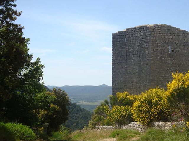 Parc Naturel Regional Sainte Baume Crtsud