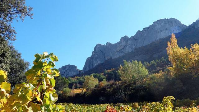 Provence Dentelles Montmirail Vlaurence