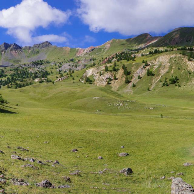 Randonnee Alpes A Mouton