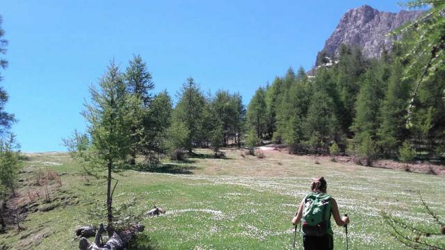 Randonneequeyras Ferme Nature Destination Queyras 1