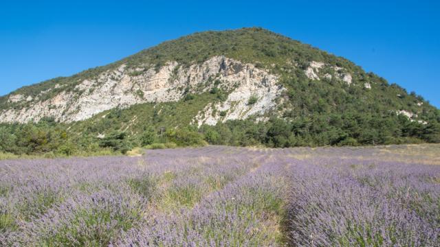 Saint Andre De Rosans Alpes Xmordefroid2