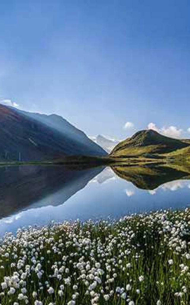 Alpes Paca B Bodin 557x400 1