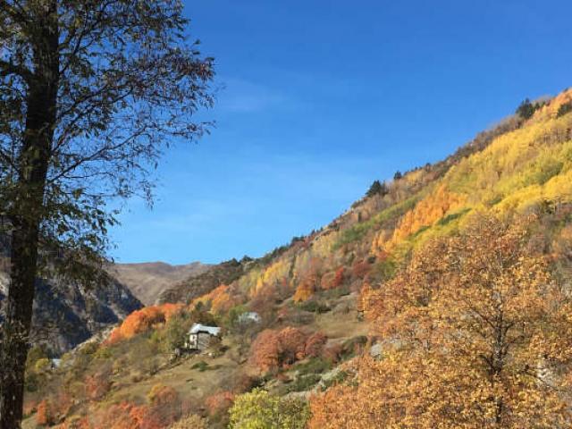 Automne Mercantour Alpes S Dragon
