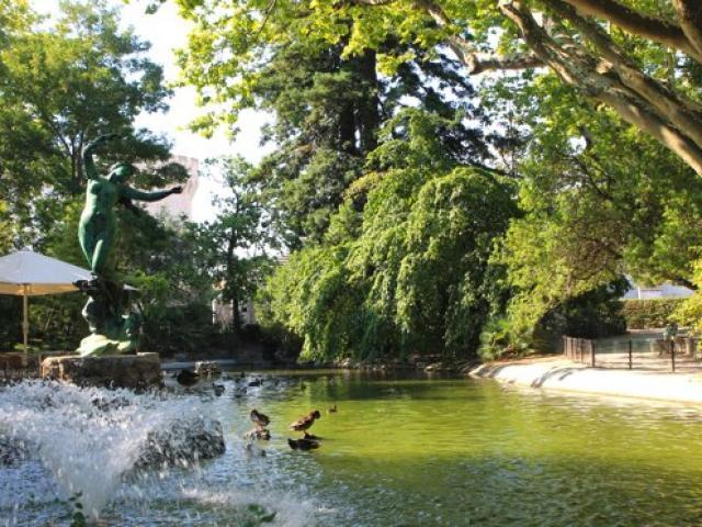 Avignon Provence Jardindesdoms Cchillio