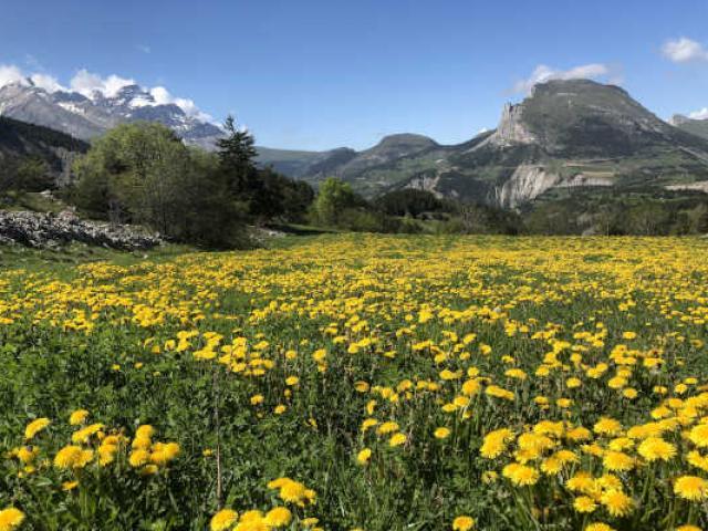 Bon Plan Devoluy Alpes Blapeyre