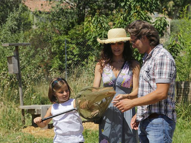famille-naturoptere-ahocquel-vaucluseprovence.jpg