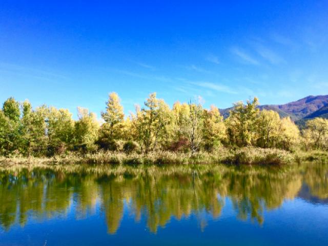 Le Lac La Saulce Alpes P Chretien