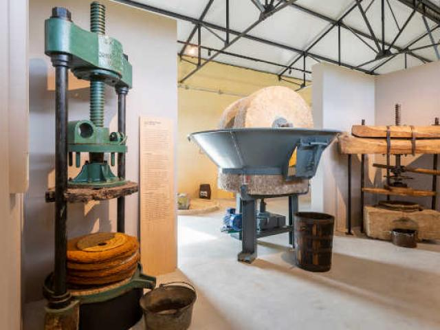 Musee De Lhuile Dolive 5251 Hdr Hautedef Bianca Ogel Luberon