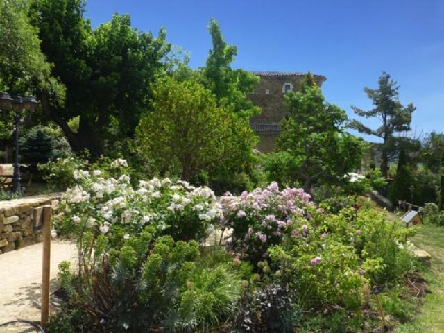 parcs-jardins-provence-abbaye-valsaintes-athre.jpg