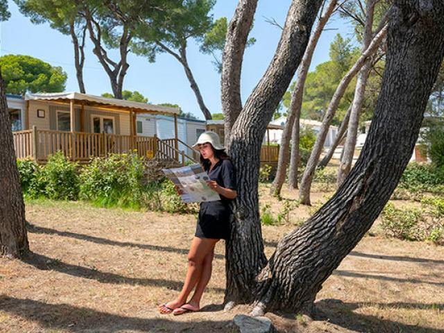 Pinede Camping Avignon Jcabanel