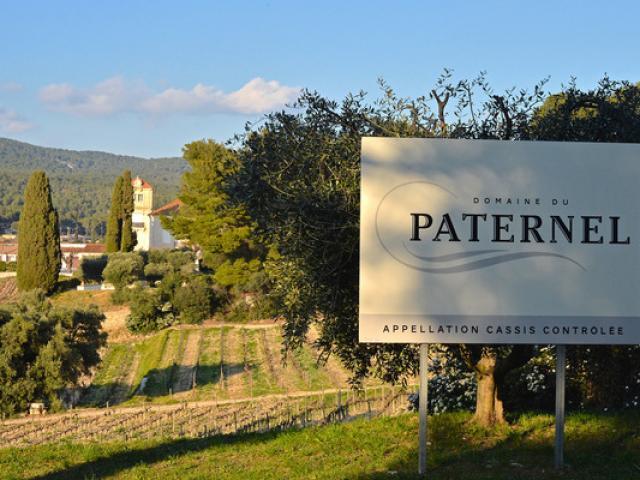 Producteur Vin De Provence Alapalus
