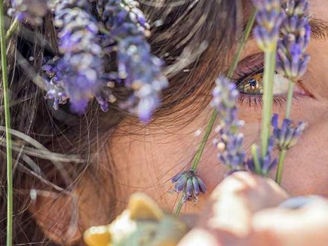 Provence Paca Dolemieux