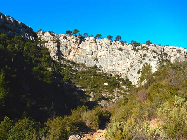 Provence Sainte Baume Mdiduca