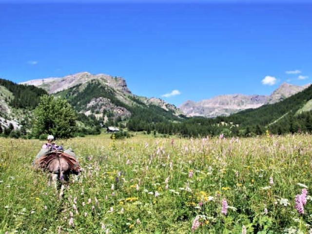 Randonnee Anes Alpes Itinerance