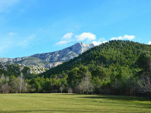 Sainte Victoire Balade Nature Provence Lecreusois