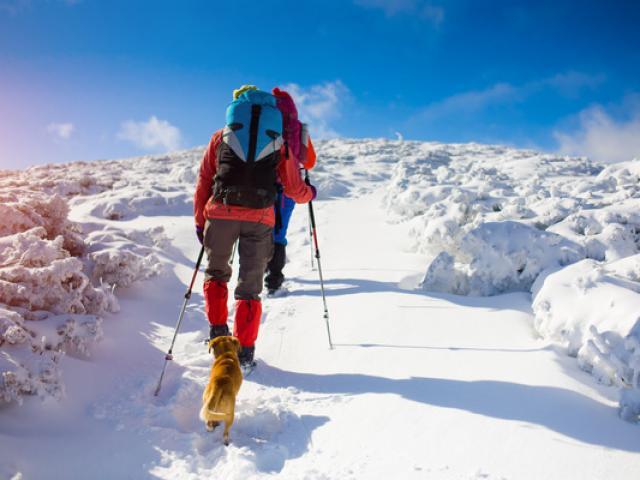 ski-de-fond-alpes-f2016-12442.jpg
