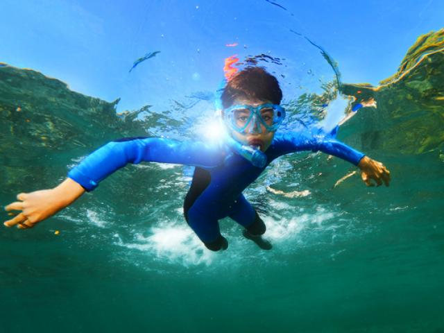snorkeling-plongee-marseille-cote-bleue-f-launette.jpg
