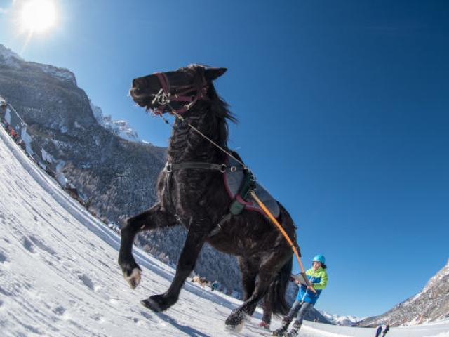 Snow Joering Queyras Mollem