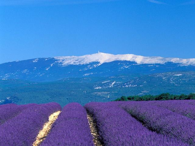 Ventoux Provence Luberon Dbasse