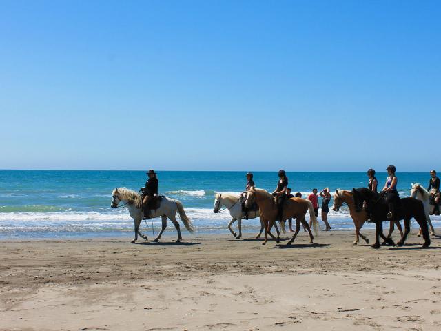 balade-cheval-plage-camargue-cchillio.jpg