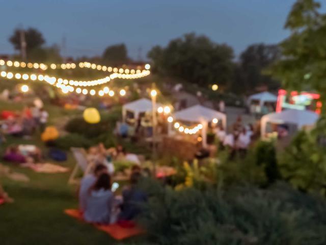 blur people picnic