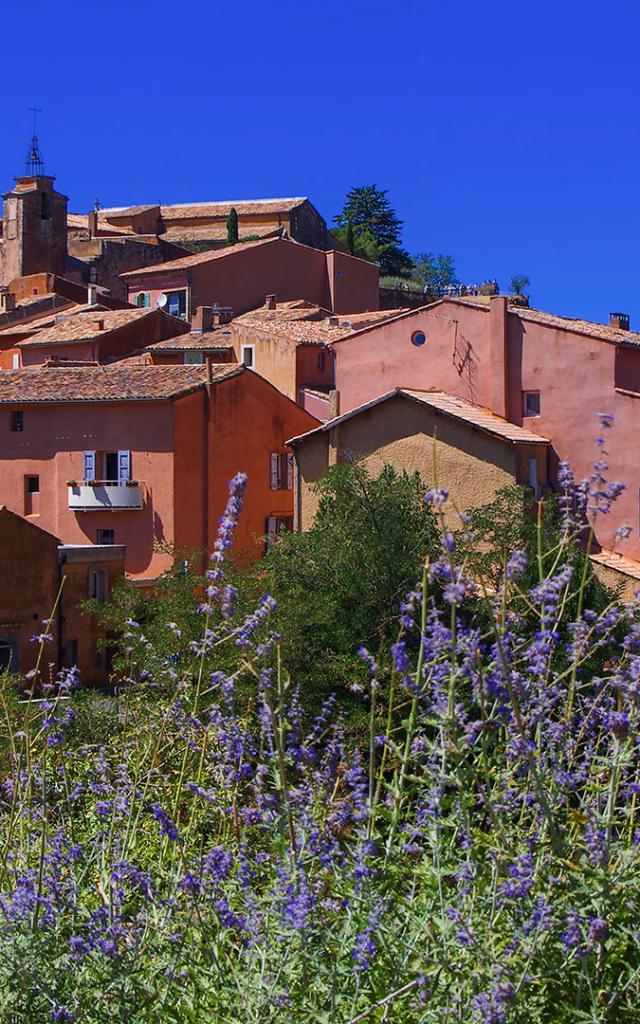 les-plus-belles-routes-de-provence-amouton.jpg