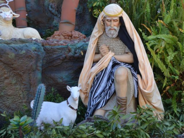 berger-agneau-noel-tradition-provence.jpg