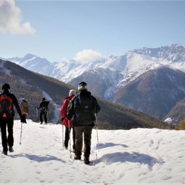 Randonnee Nature Neige Queyras Alpes