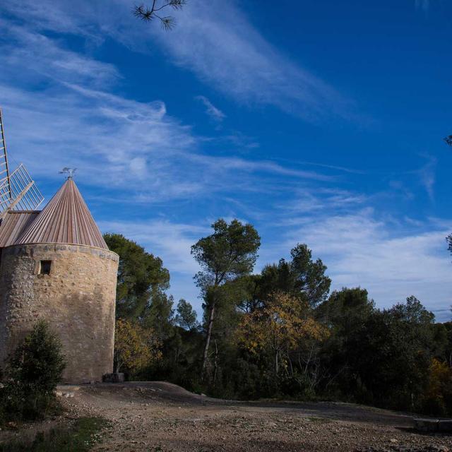 Moulin Daudet Fontvieille Borisv Ff130464161