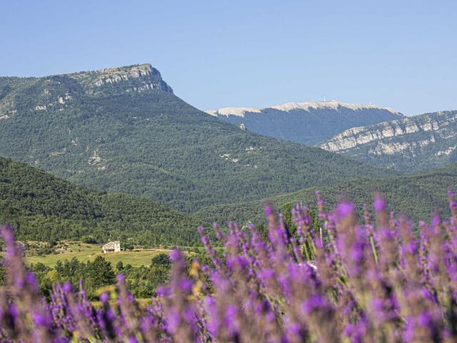 montagne-de-lure-jabron-ad04-tvergoz.jpg