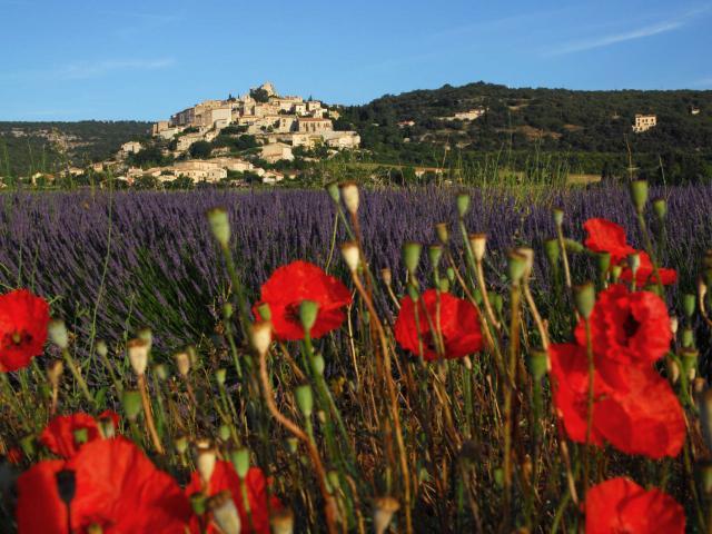 Simiane La Rotonde Provence Ad04 Pleroux