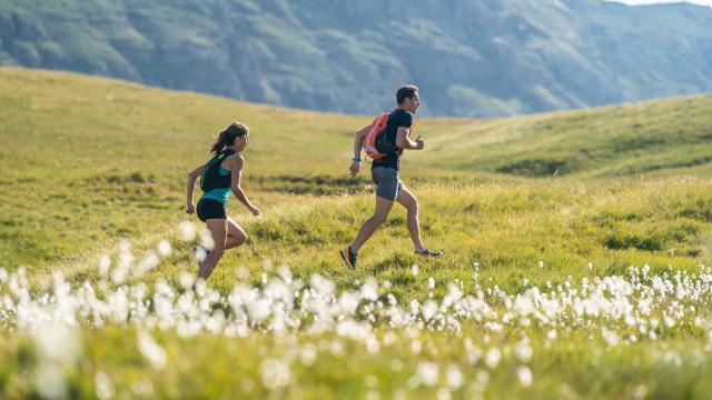 Trail Provence Alpes Cote Dazur