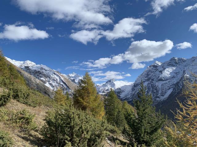 Ubaye Alpes S.dragon