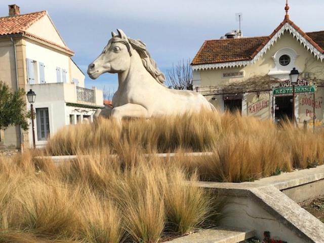 Crin Blanc Saintes Maries De La Mer