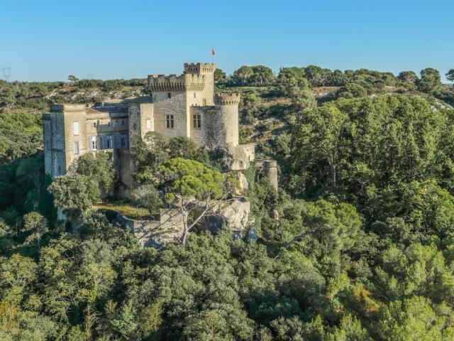 Rocher Mistral Chateau De La Barben 1
