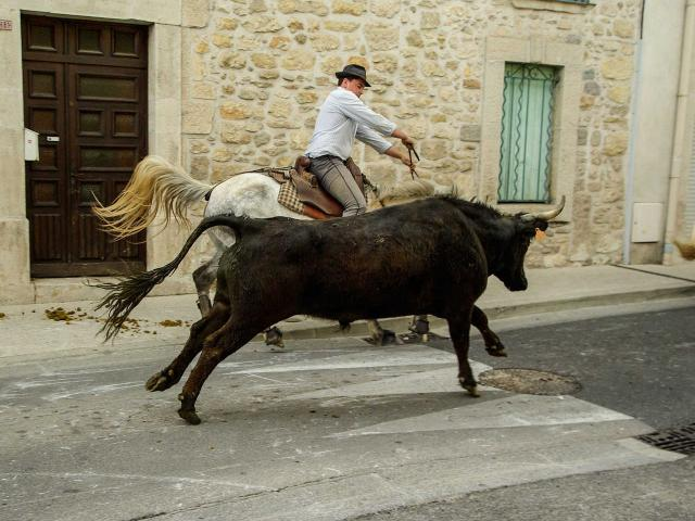 Traditions Camargue