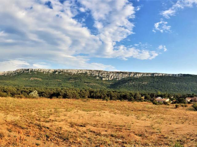 Sainte Baume Provence J.auray