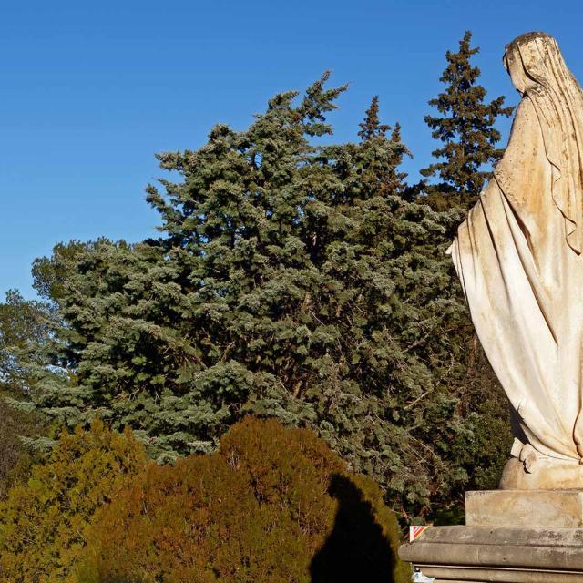 Abbaye Saint Michel De Frigolet