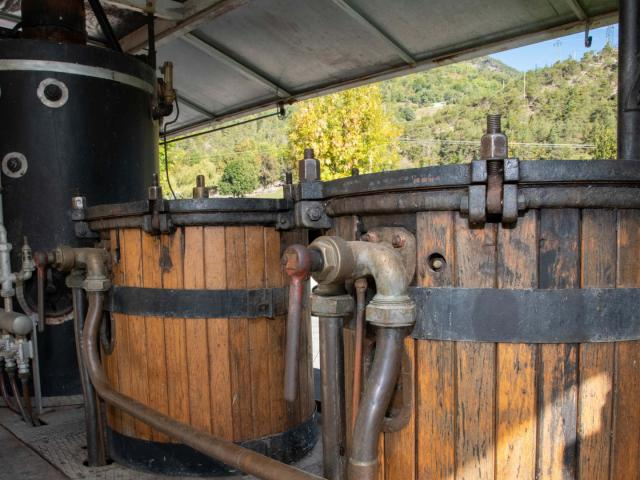 La distillerie Lachanence située à Méolans-Revel est une entreprise familiale. Tous les produits sont labellisés Bio. Les principaux produits sont le limoncello, le génépi, le gin, le wisky et le pastis. La gamme s'étend également à d'autres liqueurs, framboise, myrtille, thym