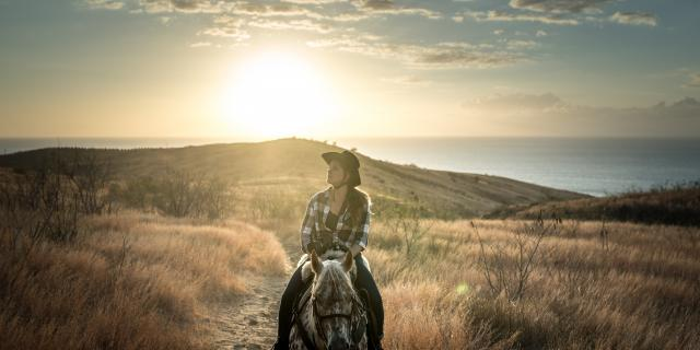 balade_a_cheval_-_coucher_de_soleil_dans_la_savane_reunionnaise.jpg